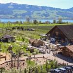 Erlebnis-Bauernhof und – Station beim Bächlihof Rapperswil-Jona